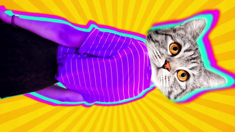 Vertical animation of cat head dancing body. Bright pop colors make this trendy video Animation