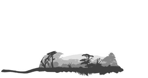 Lion & African Landscape Design Animation