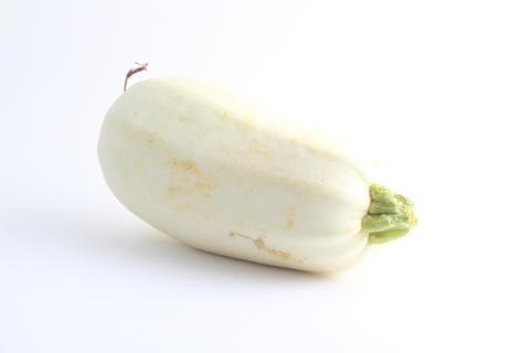 Butternut squash isolated on white background. One whole sweet pumpkin (Cucurbita moschata), single フォト