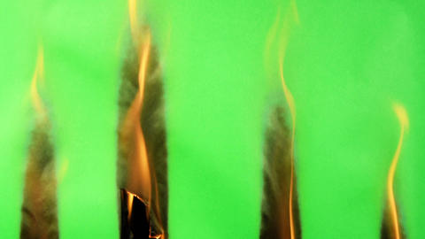 Green screen burning ideal for a nice organic transition. Better than built in plugins Acción en vivo