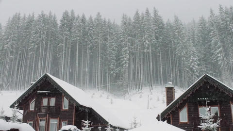 Country Cottages Among Pines During Snowfall Realtime Shot Live Action