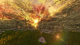 Spring scenery at sunrise, camera fly over Animation