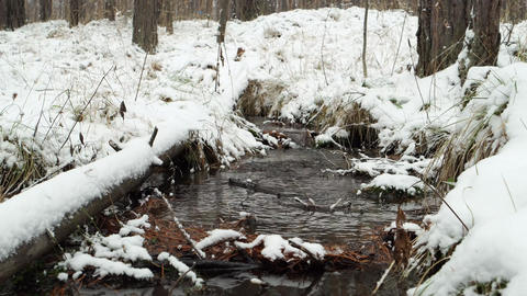 Stream through snow. It's snowing. Russia Footage