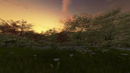 Spring scenery, timelapse day to night night sunset, camera panning Animation