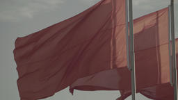 The red flag in the wind Footage