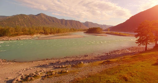 UHD Aerial View Low Flight Over Fresh Cold Mountain River at Sunny Summer Morning Green Trees and 2 Live Action