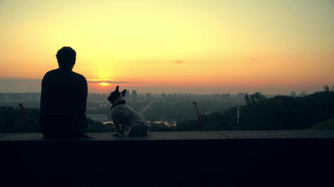 A man plays with his dog while watching the sunset Live Action