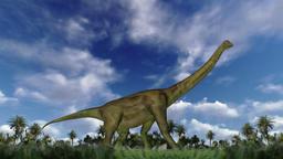 Brachiosaurus cycle walk, seamless loop Animation