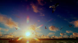 Cargo ship sailing, sunset timelapse clouds and seagulls, with sound Animation