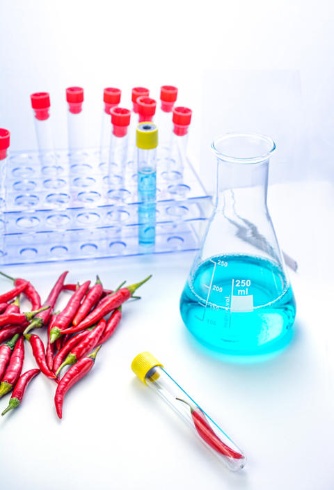 Analysis laboratory with chilli in the table for experiments Fotografía
