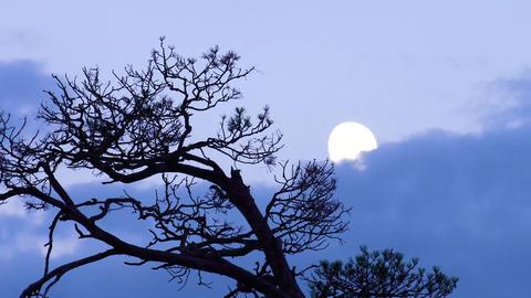 Moon and clouds at sunset Acción en vivo