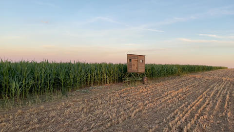 Lookout tower between corn field and empty field after harvesting GIF