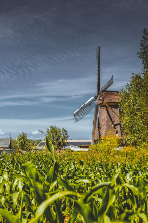 Windmill At Abcoude The Netherlands 17-6-2020 フォト