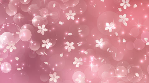 cherry blossoms sakura petal background Videos animados