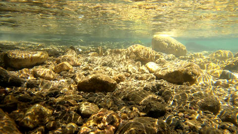 Rocks underwater on riverbed with clear freshwater, mountain river Live Action