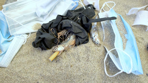 Plastic Garbage and dead anchovies fish,medical waste pollution,coronavirus 4k Live Action
