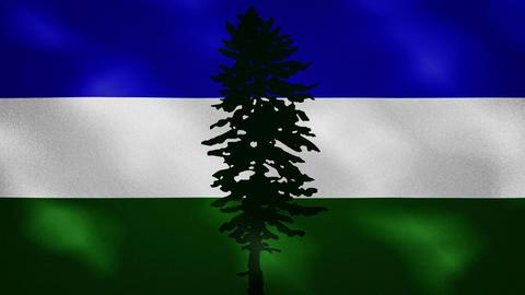 Cascadia dense flag fabric wavers, background loop Animation