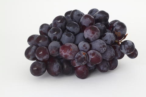 Bunches of dark grapes isolated on white background フォト