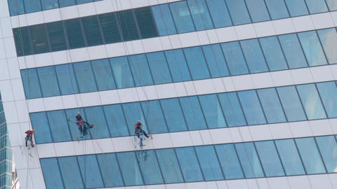 Team of washers cleaning modern office building skyscraper windows Live Action