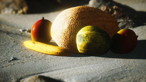 Desert melon on the sand beach GIF