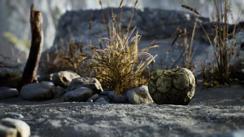 An old torn soccer ball thrown lies on sand of sea beach GIF