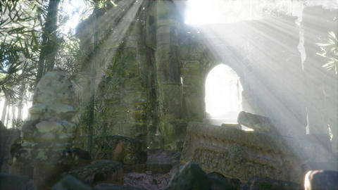 Ruins of famous Temple in cambodian Angkor Wat area ライブ動画