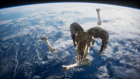 rams skull with bones at Earth orbit GIF