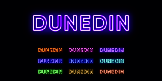 Neon Dunedin name, city in New Zealand. Neon text of Dunedin city Vector