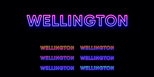 Neon Wellington name, capital city in New Zealand. Neon text of Wellington city Vector