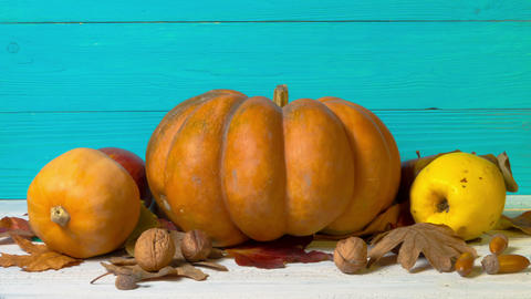 Halloween Still Life with Decorative Pumpkins, Walnuts, Acorns and Autumn Leaves Live Action