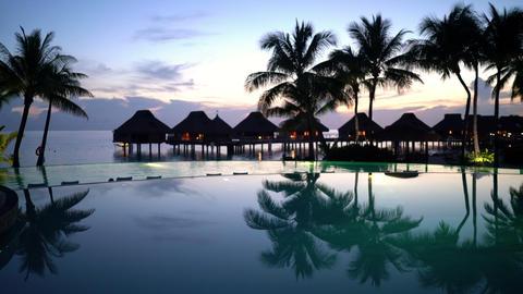 SEAMLESS LOOP VIDEO CINEMAGRAPH: Pool vacation travel destination - beach, palm ライブ動画