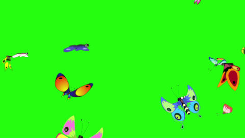 Colorful butterflies come from all directions and fly away chroma key GIF