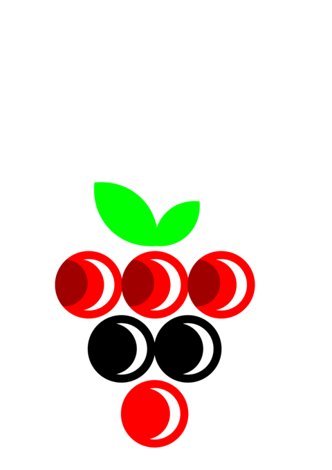 Grapes red and black icon Vector