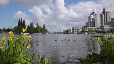 View From The Somerlustpark Park At Amsterdam The Netherlands 2020 Acción en vivo