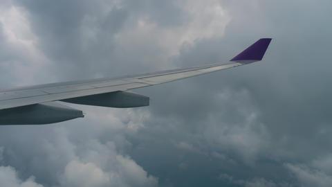 Aerial view from descending airplane Acción en vivo