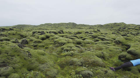Iceland moss nature landscape with hiker relaxing Acción en vivo