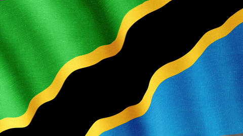 Tanzania. State flag of the country Animation