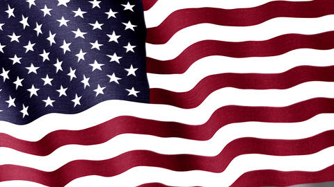 USA. State flag of the country Animation