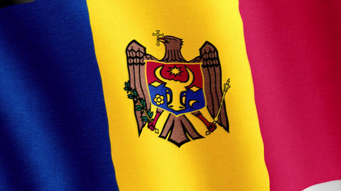 Moldova. State flag of the country Videos animados