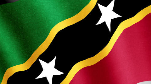 Saint Kitts and Nevis. State flag of the country Videos animados