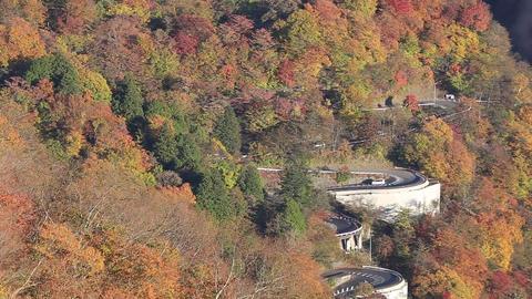 Season of autumnal leaves, Nikko Iroha Saka Footage