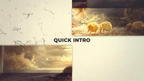 Quick intro and stylish slideshow After Effects Template