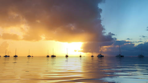 Tropical Sunset with Yachts Background Animation