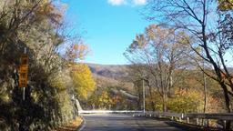 Tochigi prefecture, autumn's Iroha slope Footage