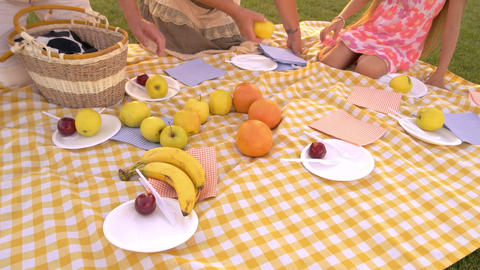People picnic cloth fruits elderly people with granddaughter on picnic Live Action