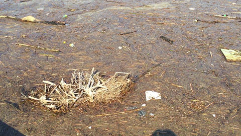 Dirty water texture litter and pieces of wood stop polluting Live Action