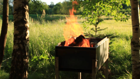 Fire in the Grill on the Background of Nature in Summer Live Action