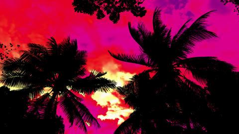 Storm Palms Under Acid Sky Animation