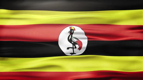Realistic Seamless Loop Flag of Uganda Waving In The Wind With Highly Detailed F Animation