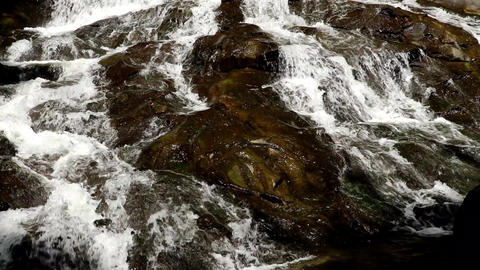 Close up of flowing water splash from mountain river on summer day. Cold spring Live Action